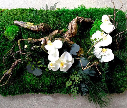 Cadres et murs végétaux 14
