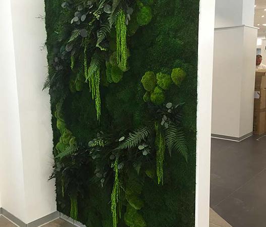 Cadres et murs végétaux 19