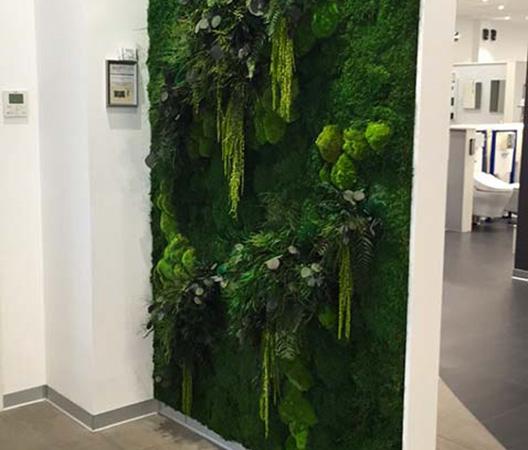 Cadres et murs végétaux 31