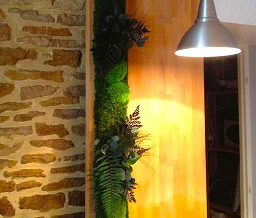 Cadres et murs végétaux 38