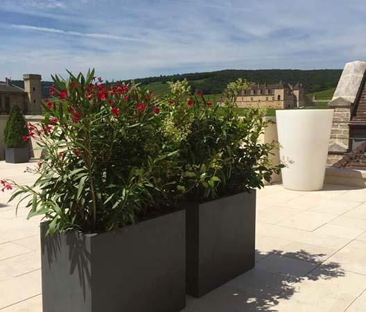 Terrasses végétalisées 5