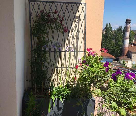 Terrasses végétalisées 7