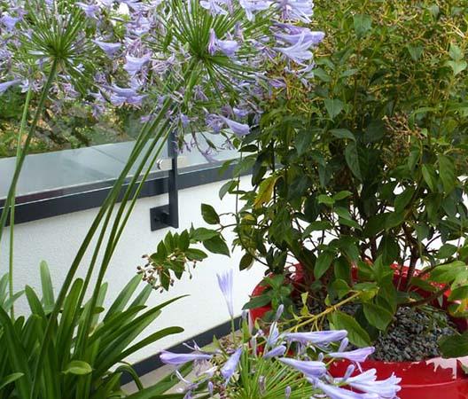 Terrasses végétalisées 17
