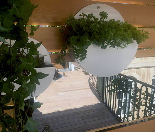 Terrasses végétaliser à Dijon 2