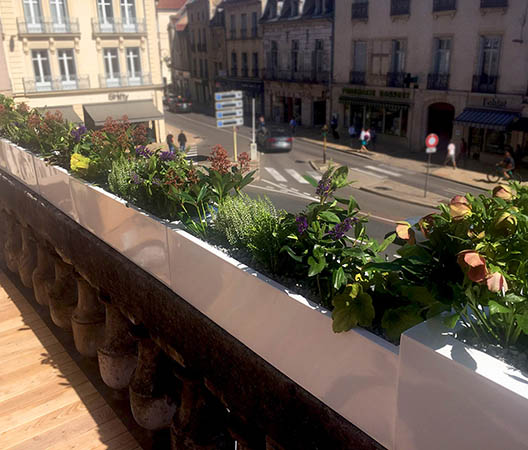 Terrasses végétaliser à Dijon 4